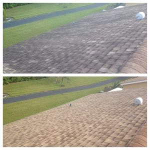 Tile roof cleaning by All American Pressure Cleaning in Palm Beach, FL