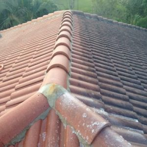 Roof cleaning with pressure washing by All American Pressure Washing